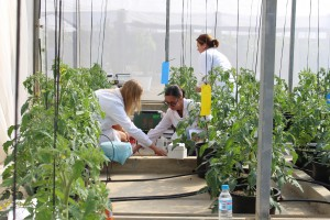Estudio agronómico Richwater