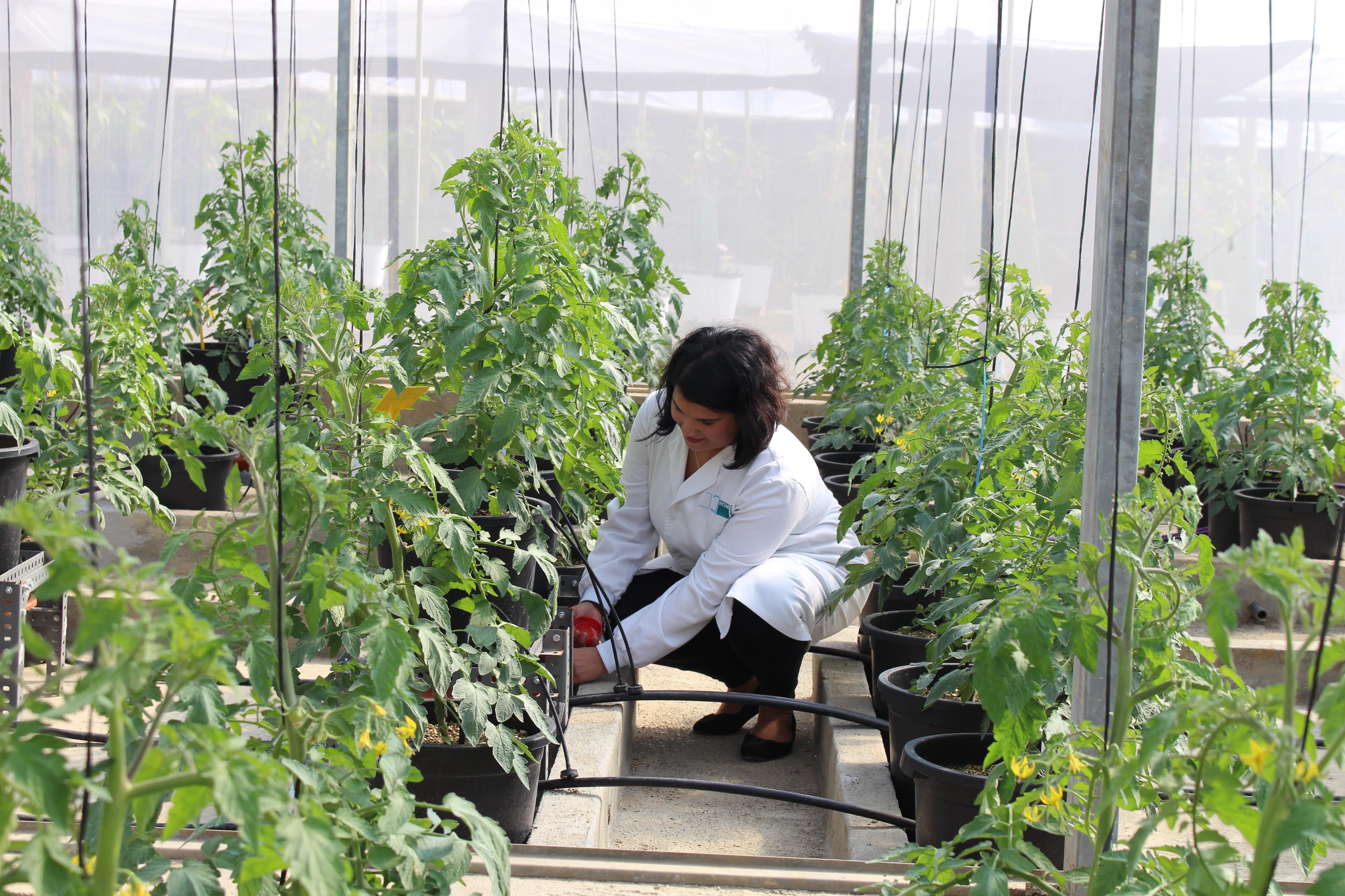 Estudio agronómico Richwater - Desiré Muñoz